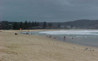 Terrigal Beach: Central Coast Net